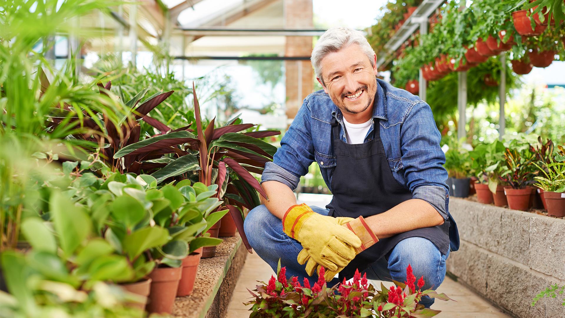 Optimisez la rentabilité de votre espace en jardinerie