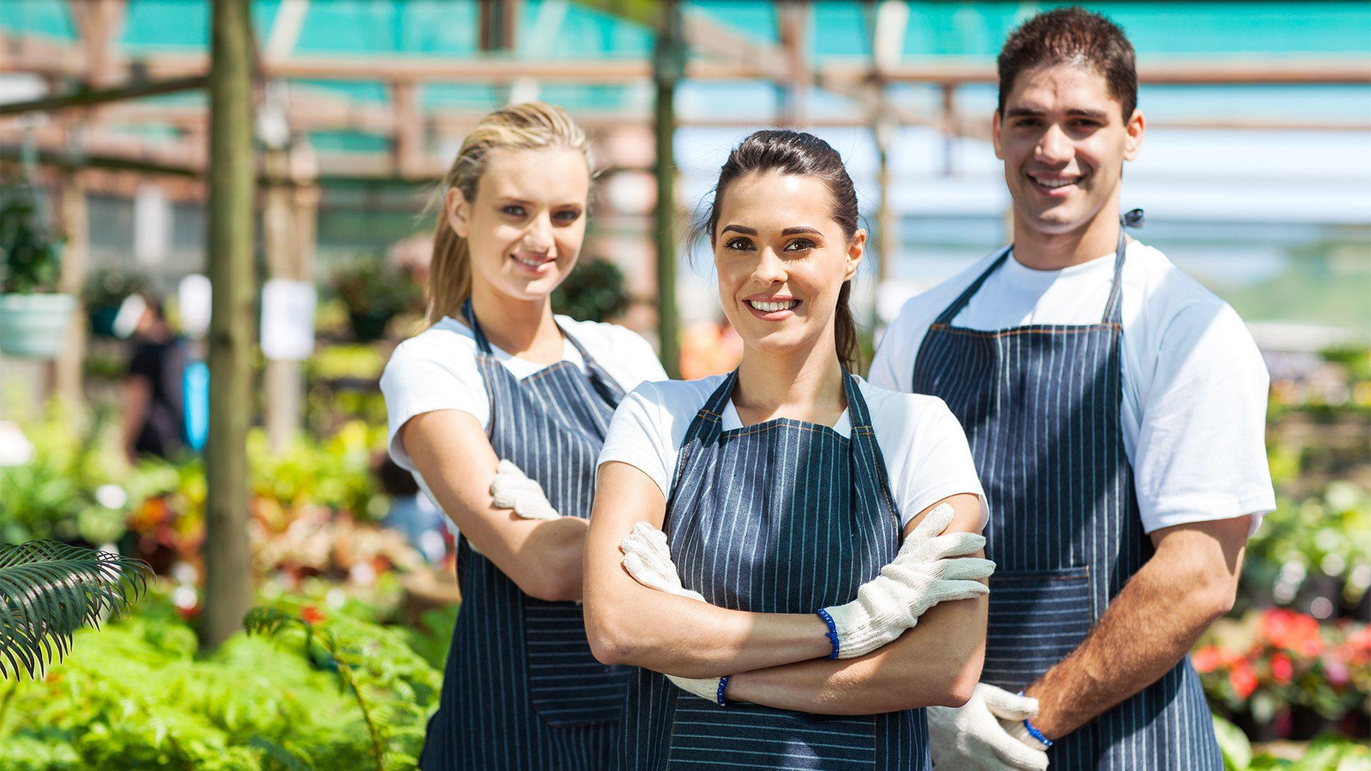 Service d'affichage d'offres d'emploi