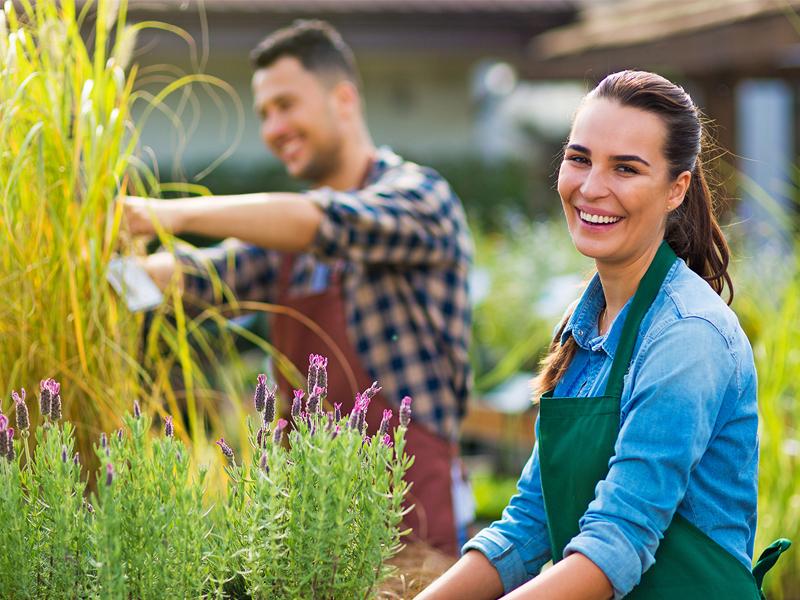 Recrutement en horticulture ornementale