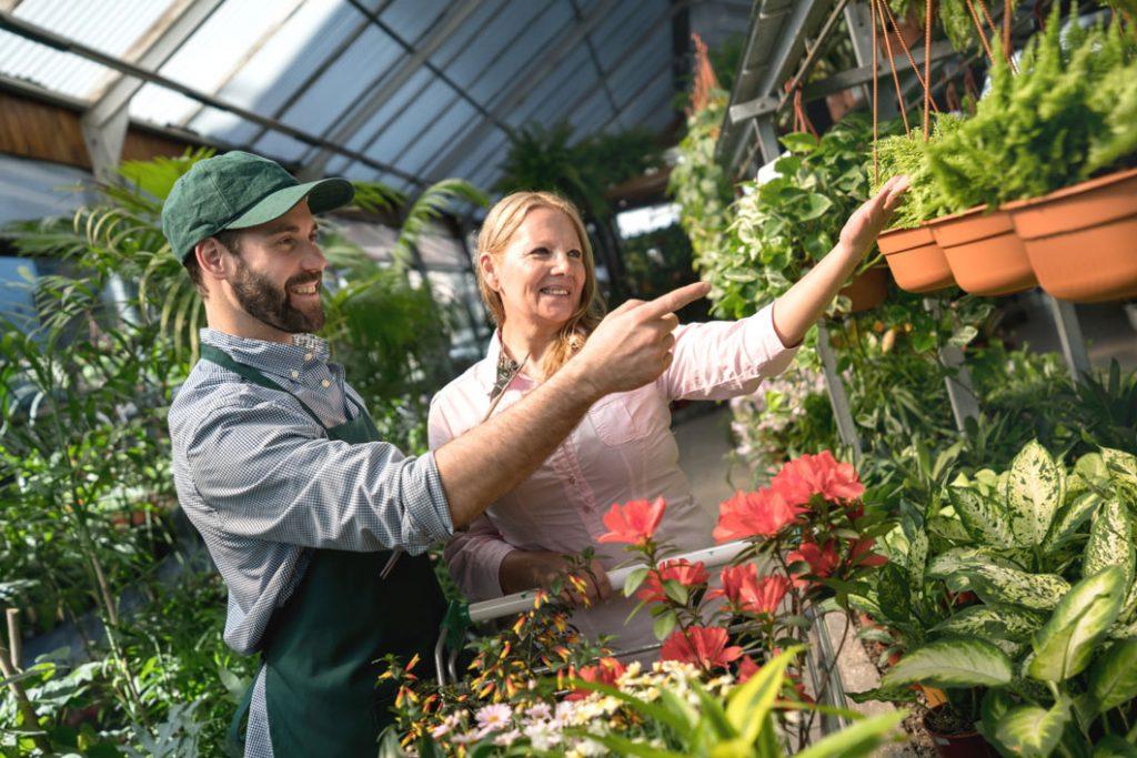 Formation Service Conseil en jardinerie