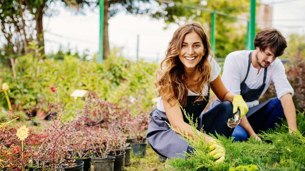 Perfectionnement Formule plus en horticulture